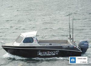 Viking 550 HT