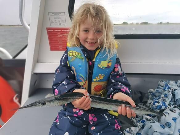 Guidet fisketur efter Hornfisk